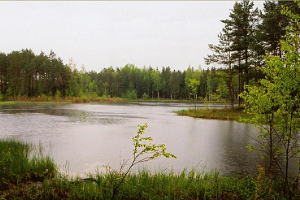 Kisejärve Landscape Protection Area