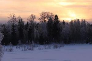 Early morning in winter.