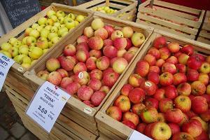 Türi Apple Festival