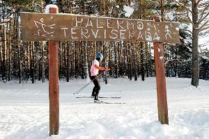 Skier on the Palermo Health trail