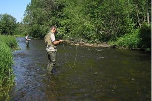 Daytime fishing in a trout river in northern Estonia