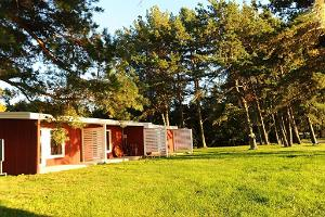 Accommodation - apartment-style cabins