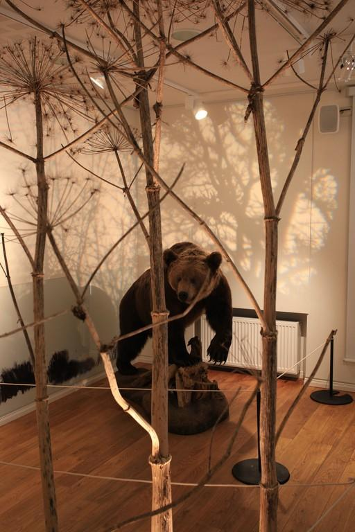 """Exhibition """"Dangerous Wildlife: Myths and Reality"""""""