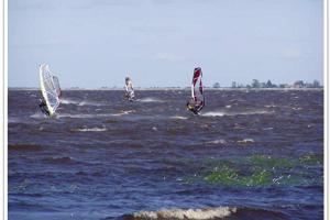Windsurfen am Räpina Strand