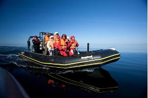 Rigid-inflatable boat